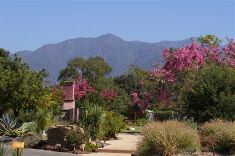 Los Angeles Botanical Garden 10 Parks And Gardens To Visit In Los Angeles