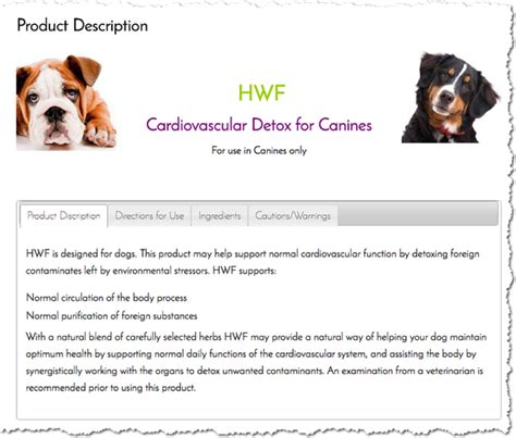 heartworm facts prevalence medication and alternative