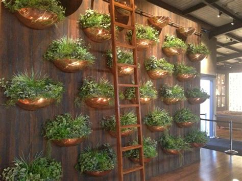 herbs on wall brass herb pot wall edible garden pinterest herb pots herbs and brass