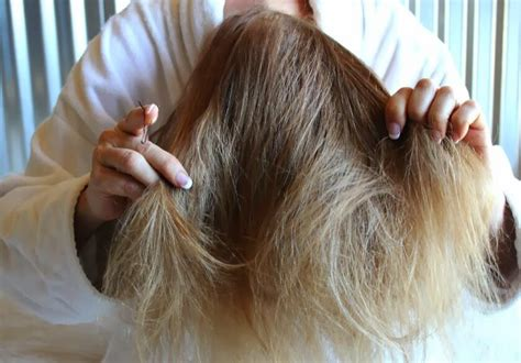 dry hair upside down dry hair upside down dry hair upside down how to get