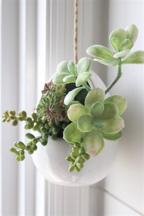 succulents in bathroom how to make mini succulent arrangements my life from home