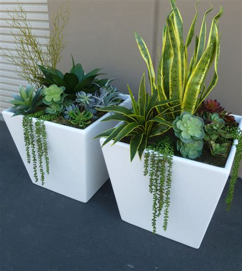 Large Succulent Planter | mixed succulents in large fiberglass planters make be leaves