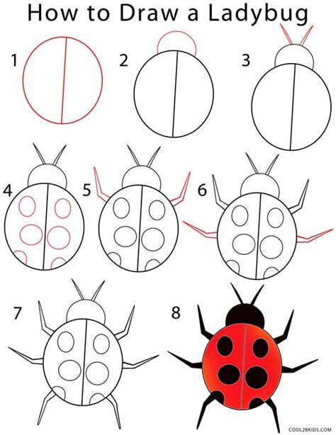 how to draw a ladybug step by step pictures cool2bkids