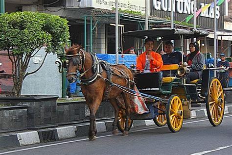 Sho Kuda Di Jogja enem kabeh 6 asal nama kereta kuda khas di indonesia