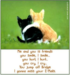 Sho Kucing Smile friends quotes friendship quotes quotes
