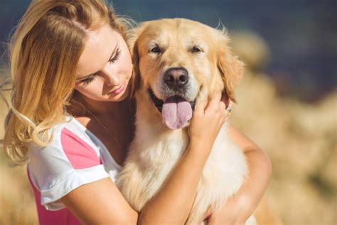 puppy hug why dogs don t like to be hugged mnn nature network