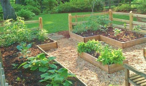 starting  family vegetable garden redeem  ground