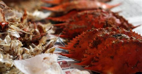 what is the difference between a dirty crab and a clean crab recipes by rachel rappaport how to eat steamed blue crabs