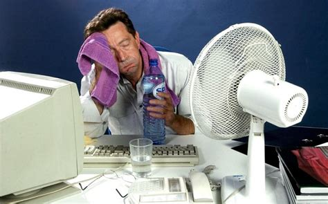 funny hot weather pictures for facebook 19 tips to stay cool in the heat telegraph