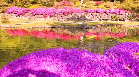 Most Beautiful Flower Gardens In The World Atyutk Beautiful Flowers Garden In The World