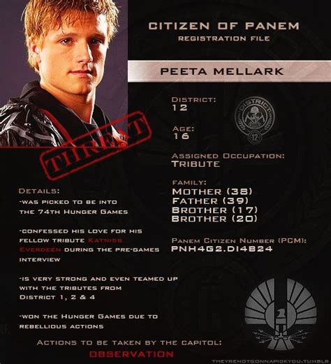 the hunger games peeta profile the hunger games