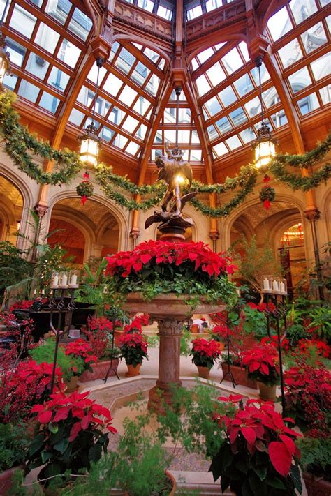 lighting stores in asheville nc 231 best biltmore christmas images on pinterest xmas