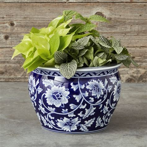 Blue White Ceramic Planter Medium Williams Sonoma Blue And White Planters
