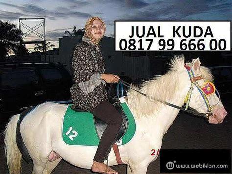 Jual Sho Kuda Di Jakarta kuda poni bonsai sandel tunggang delman jakarta