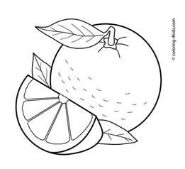 Galerry orange fruit coloring page