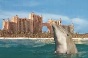 atlantis bahamas bobby romano blogs big break atlantis i m hooked