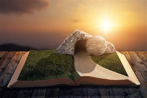 what does the bible say about the tree what does the bible say the resurrection grace thru faith