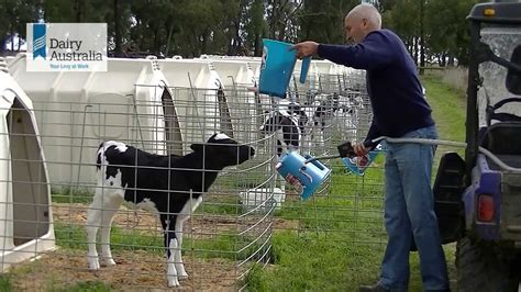 calf housing design how i designed my calf housing with stuart tweddle youtube