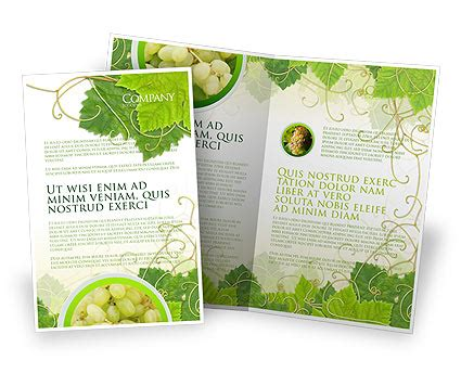 layout design nature grape leaves ornament brochure template design and layout