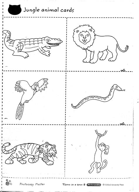 13 best images of jungle animals worksheets printable