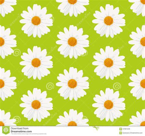 daisy background pattern vector marguerite daisy flowers seamless pattern