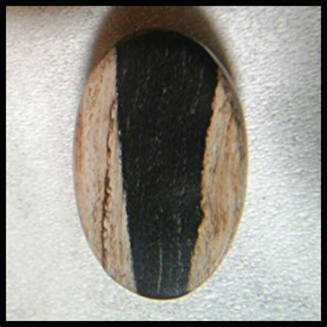 Cincin Akik Fosil Kelor gambar inilah tes galih kelor asli fosil gambar cincin di