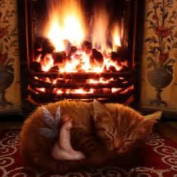 Cozy by Cozy By Tamarar On Deviantart