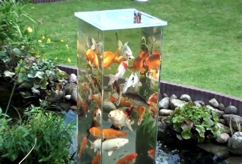 aquarium pond design diy fish observation tower petdiys com