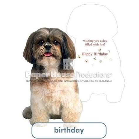 Shih Tzu Birthday Card Shih Tzu Birthday Card Paper House Productions Birthday