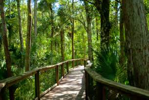 Most Beautiful Places In The United States natural attractions in florida florida hikes