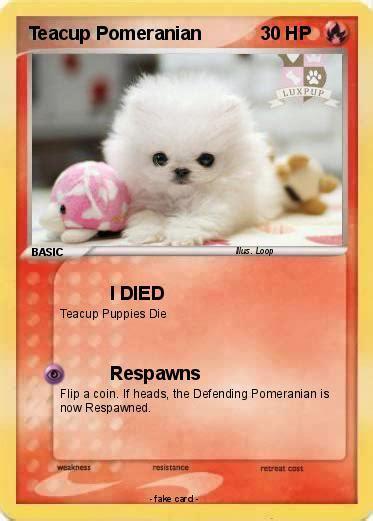 my pomeranian died pok 233 mon teacup pomeranian 4 4 i died my card