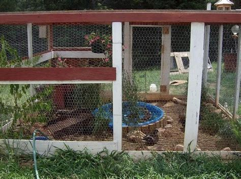 duck houses plans 17 best images about ducks on pinterest chicken eggs backyard chickens and duck