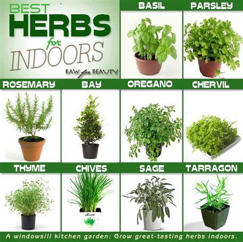 Growing Herbs On Windowsill Windowsill Herbs Diy