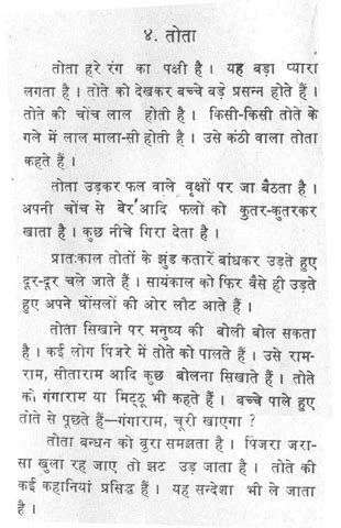 Essay On Garden In Marathi Language by Essay On Parrot In