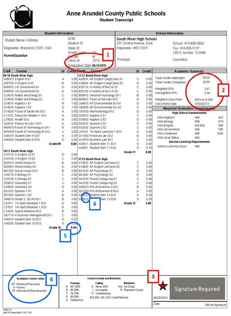 unofficial transcript template transcript exle pictures to pin on pinsdaddy