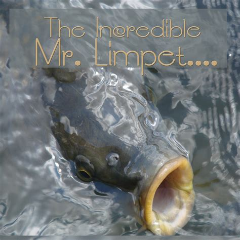 Pictures Of The Mr Limpet