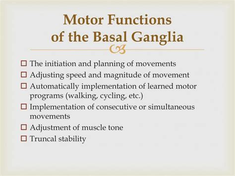 motor functions ppt extrapyramidal system and basal ganglia powerpoint