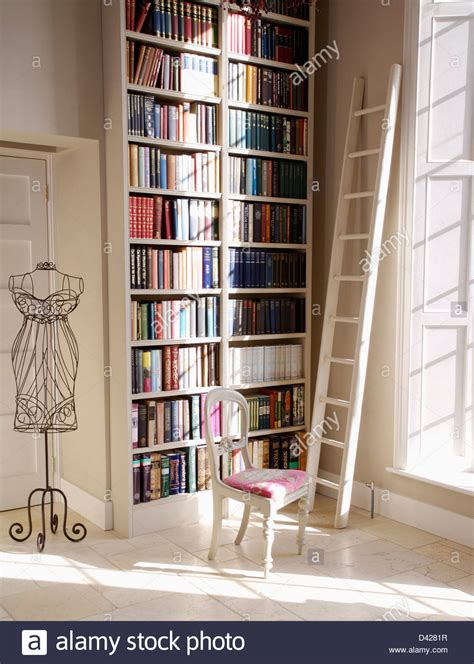 white ladder beside floor to ceiling bookshelves in