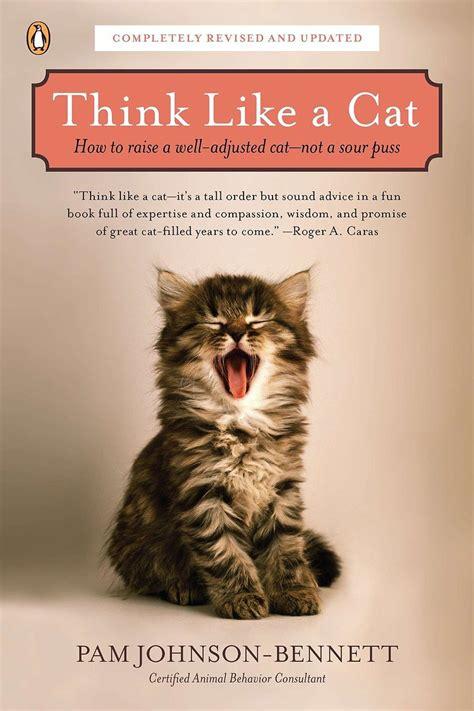 is for cat a gift book books think like a cat how to raise a well adjusted cat not a