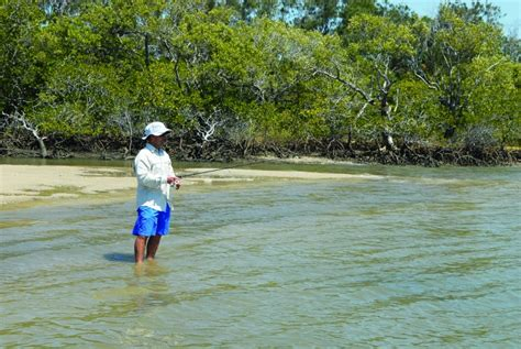 fishing boat hire jacobs well land based fishing around brisbane bnb fishing magazine