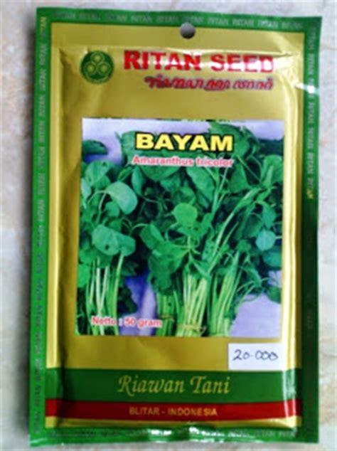 Harga Bibit Sawi Pakcoy hidroponik mojokerto toko benih sayur selada