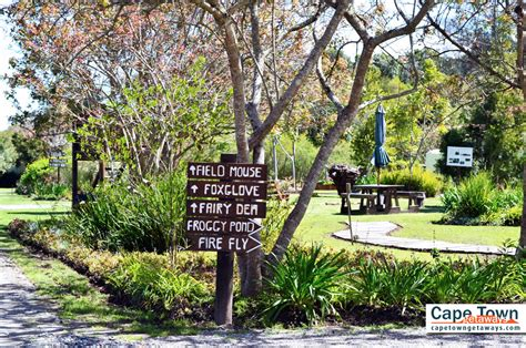 self catering cottage forest edge self catering cottages knysna