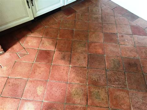 Terracotta Floor by Tile Cleaning Cleaning And Polishing Tips For
