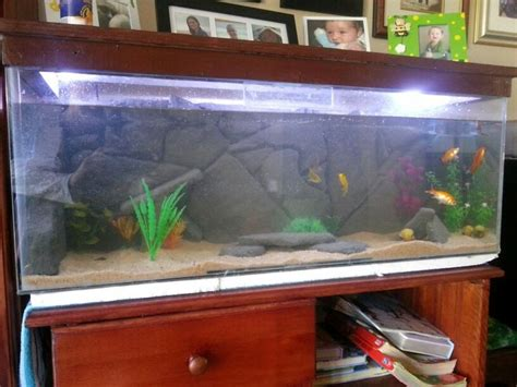 Diy Fish Tank Decor by 17 Best Images About Diy Fish Tank Decor On