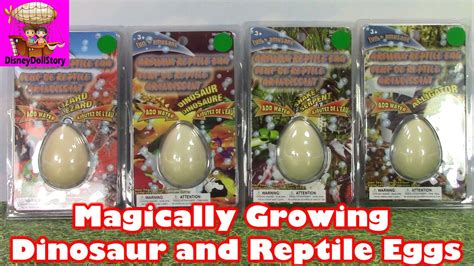 Growing Egg magically growing dinosaur egg and reptile eggs
