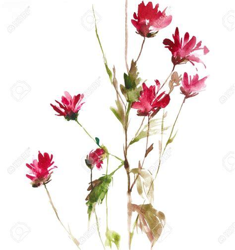 water color flower watercolor flowers pesquisa ink