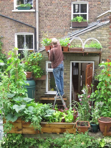 Great UK blog on small space/container gardening
