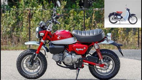 125er Motorrad Youtube by 2019 Honda Monkey 125 And Cub 125 Youtube