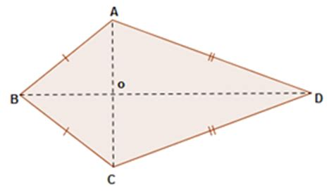 diagram of kite kites shape www pixshark images galleries with a bite
