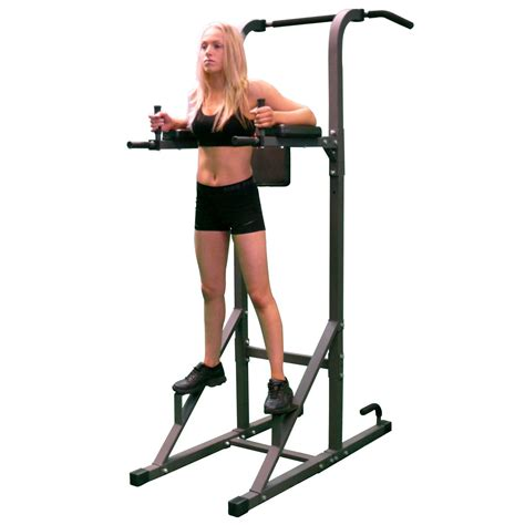 Dips Chaise Romaine by Dkn Vkr Power Tower With Pull Up And Dip Station